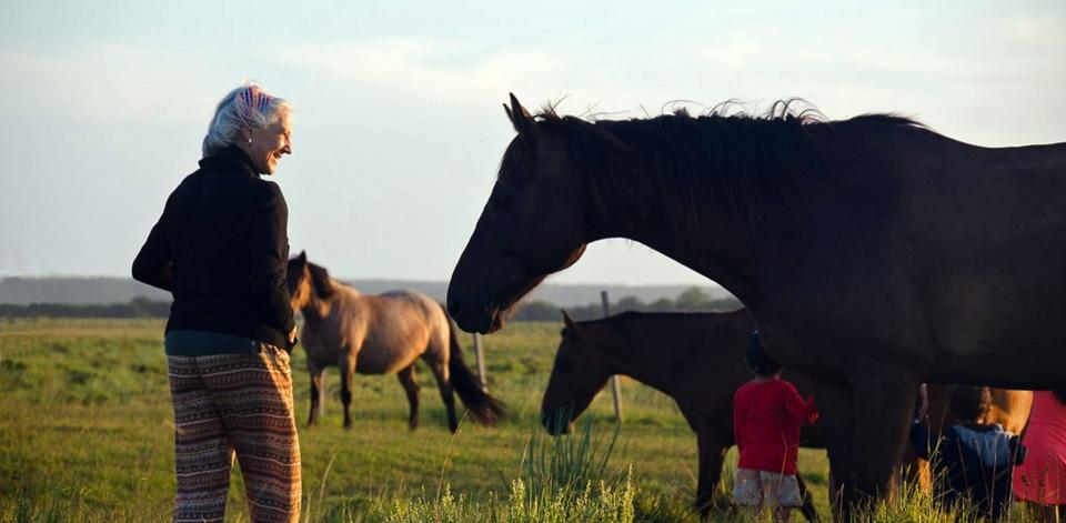Mamma y caballos